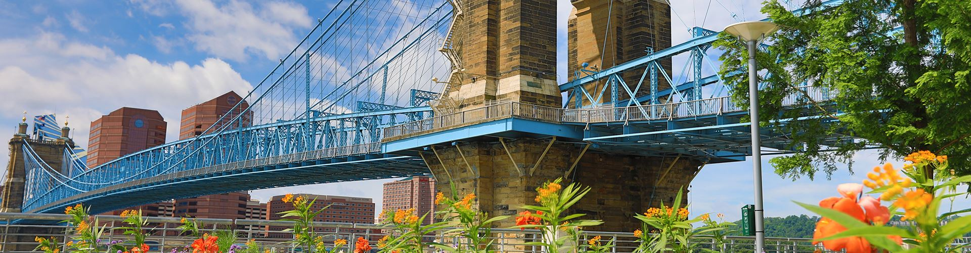 The John A. Roebling Bridge spanning the Ohio River with flowers and trees in the foreground